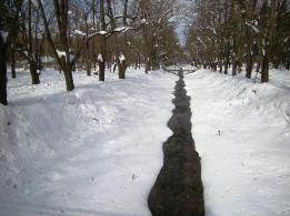 vrnjacka-banja